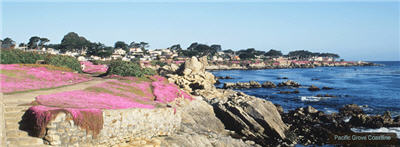 pacific-coastline