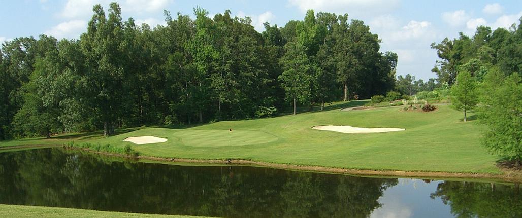 Travelling Golfer header image